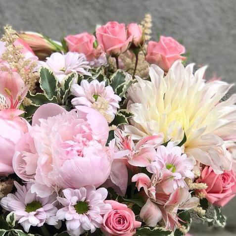 Пионы, розы, георгин