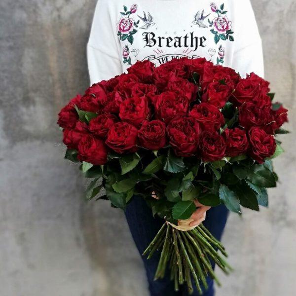 51 Красная Роза на кипре