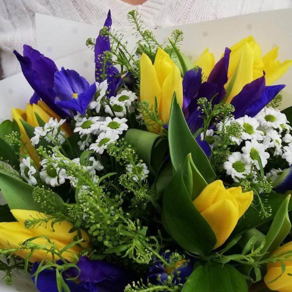 Желтые тюльпаны и синие ирисы кипр