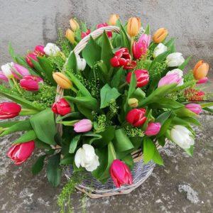 Tulips basket