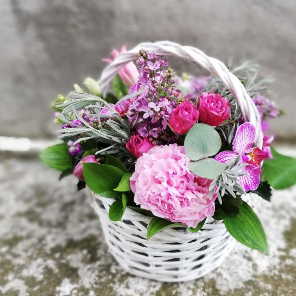 Милая корзинка с орхидеей лимасол
