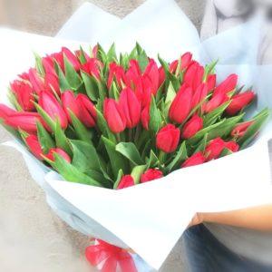 51 алый тюльпан